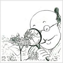イラスト33. 花にまつわるエトセトラ